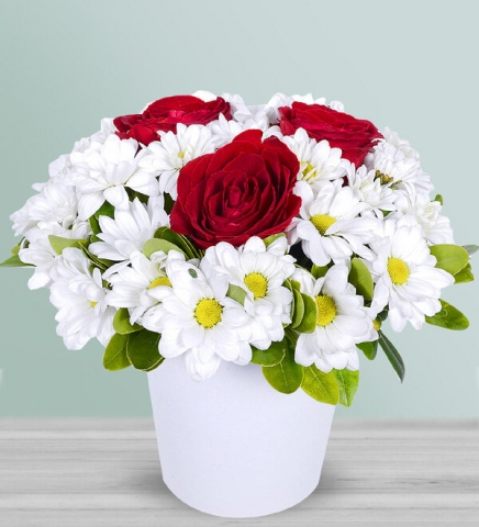 İnci Tanesi Papatyalar Kırmızı Güllerv