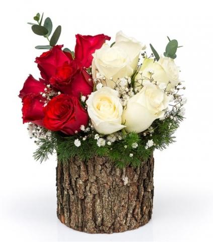 Ahşap kutukte Kırmızı ve beyaz güller
